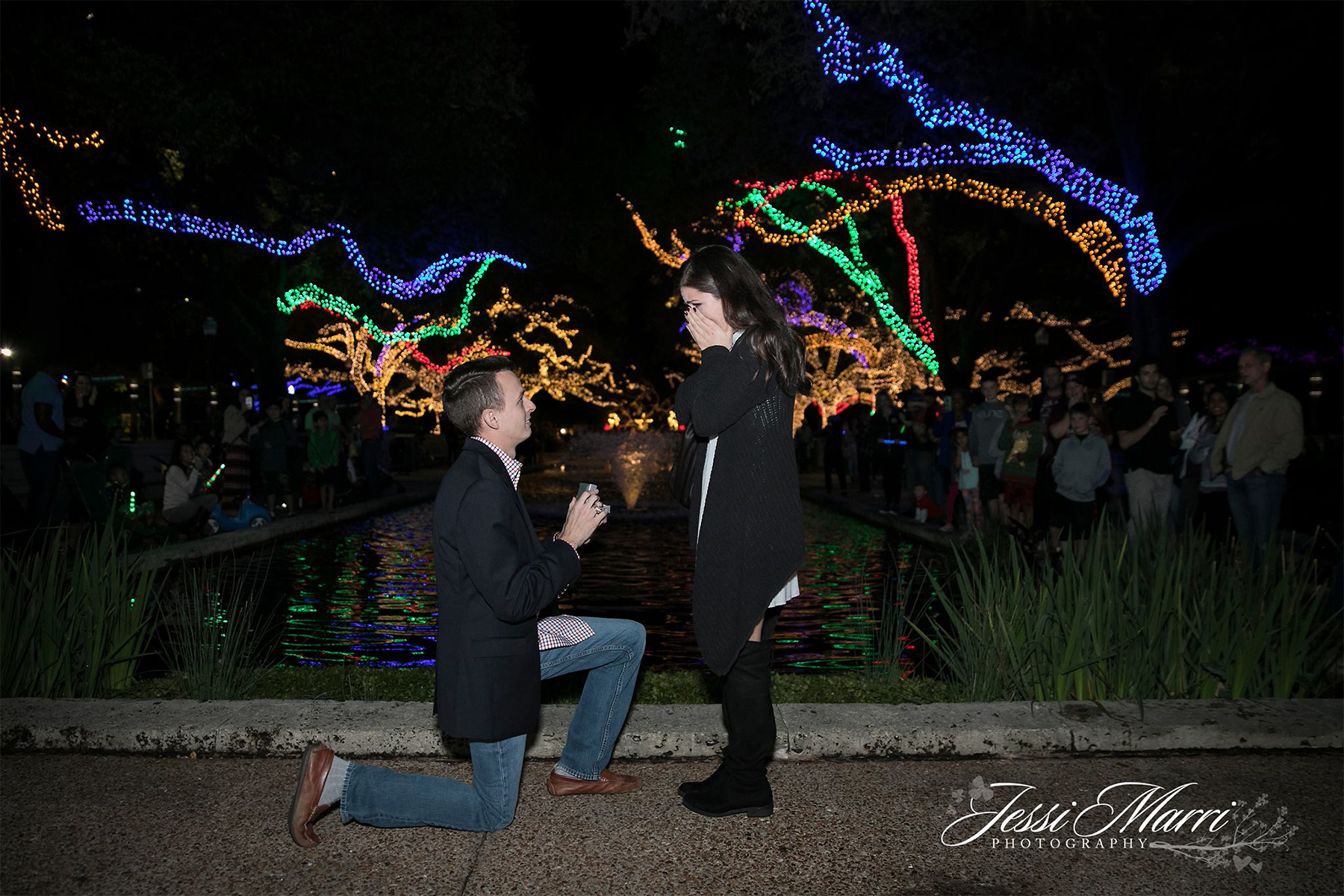 A Magical Zoo Lights Proposal Jessi Marri Photography Best